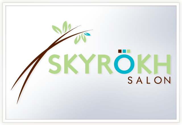 skyrohk-logo